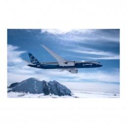 Plakát 787-9 First Flight...